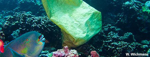 70 Prozent des Mülls im Meer liegen auf dem Meeresboden, nur 15 Prozent treiben an der Oberfläche und weitere 15 Prozent stranden irgendwann an den Küsten. Image credit: NABU.de