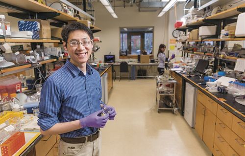 "Biomedical engineer Rong Fan has developed a device that reveals a cell's nature based on the proteins it secretes. ""Cells use proteins to talk to each other,"" he says. ""I wanted to know what they were talking about."" (Photo by Robert A. Lisak)"