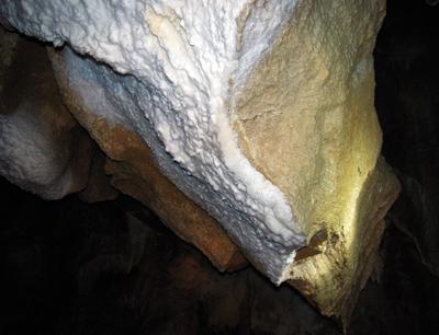 Leben in lebensfeindlicher Umgebung: Die Mondmilch-Ablagerungen der Hundalm Eis- und Tropfsteinhöhle werden von vielen Mikroorganismen bewohnt. Bild credit: Christoph Reitschuler