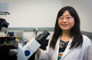 """Mechanical engineering assistant professor Donglei """"Emma"""" Fan. Image credit: The University of Texas at Austin"""