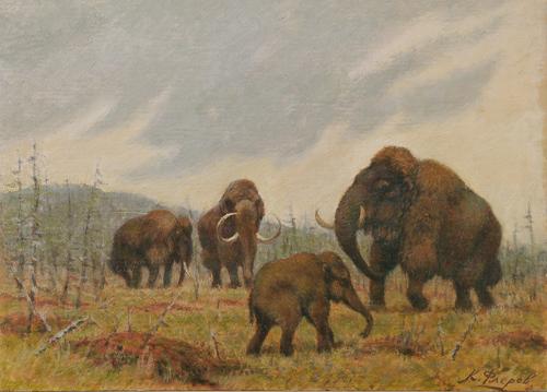 Mammutgruppe mit Jungtier in sommerlicher Eiszeitlandschaft. Image credit: © Maler C. C. Flerov, Privatbesitz