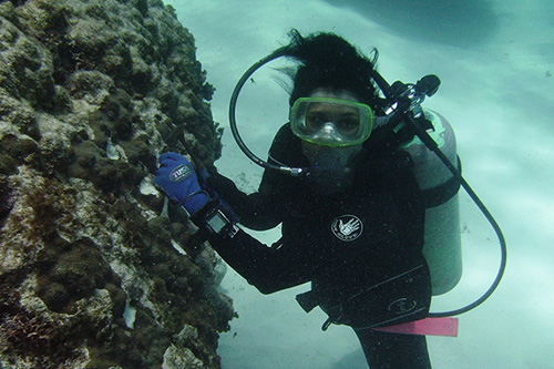 Andréa Grottoli of Ohio State University collects samples. Photograph courtesy of Ohio State University