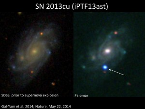 A star in a distant galaxy explodes as a supernova: while observing a galaxy known as UGC 9379 (left; image from the Sloan Digital Sky Survey; SDSS) located about 360 million light years away from Earth, the team discovered a new source of bright blue light (right, marked with an arrow; image from the 60-inch robotic telescope at Palomar Observatory). This very hot, young supernova marked the explosive death of a massive star in that distant galaxy. Image credit: Berkeley Lab (Click image to enlarge)