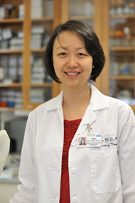 Dr. Ming Guo, UCLA associate professor of neurology and pharmacology. Image credit: UCLA