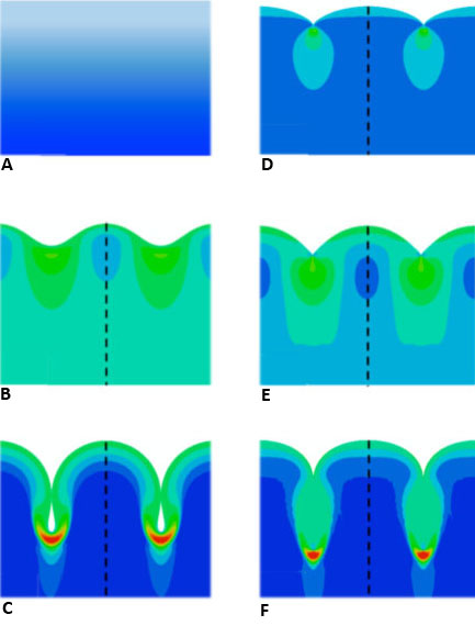 The natural history of wrinkles, creases, and folds. With increased compression, a flat surface with a stiffness boundary layer (a) can become a wrinkle (b) and then a fold (c). Other possibilities include an instantaneous crease (d), a wrinkle-crease (e) or a fold-crease (f). Image credit: Brown University