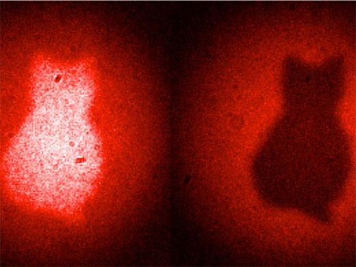 Rotes Licht macht den Umriss einer katzenförmigen Blende sichtbar, ohne dass die Photonen auch nur in die Nähe der Blende gekommen sind. Tatsächlich wurde die Blende mit infraroten Photonen bestrahlt und anschließend die dabei aufgenommene optische Information mit einem neuen Verfahren auf die roten Photonen übertragen (Image copyright: Patricia Enigl, IQQQI).