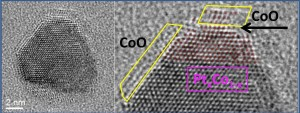 TEM image of platinum/cobalt bimetallic nanoparticle catalyst in action shows that during the oxidation reaction, cobalt atoms migrate to the surface of the particle, forming a cobalt oxide epitaxial film, like water on oil. Image credit: Berkeley Lab (Click image to enlarge)