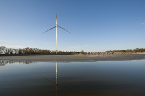 Adjusting wind turbine operations during the migration season at the University of Delaware's Hugh R. Sharp Campus in Lewes has resulted in a significant decrease in deaths among bats, according to researchers. Photo by Kathy F. Atkinson
