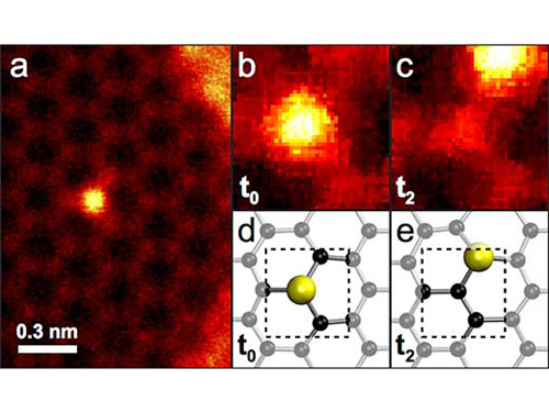"""Die helleren Siliziumatome wurden im Elektronenmikroskop dabei beobachtet, wie sie gelegentlich von einem Gitterpunkt zum nächsten Gitterpunkt """"hüpfen"""". (Image copyright: Toma Susi, Universität Wien)"""