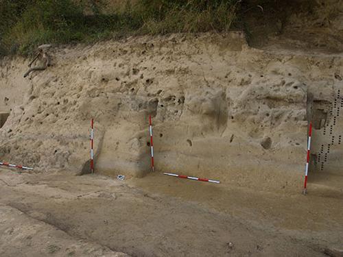 Profil in Willendorf II mit der Abfolge von braunen Paläoböden (gemäßigt-kaltes Klima) und gelbem Löss (kaltes Periglaziales Klima bis zu tiefem Frost). Die Löcher sind die Reste von Probennahmen (Image copyright: The Willendorf Project, Philip R. Nigst, Bence Viola).