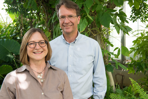 Heidi Appel and Rex Cocroft. Appel and Cocroft determined that plants respond to the sounds that caterpillars make when eating plants and that the plants respond with more defenses. Image credit: Roger Meissen