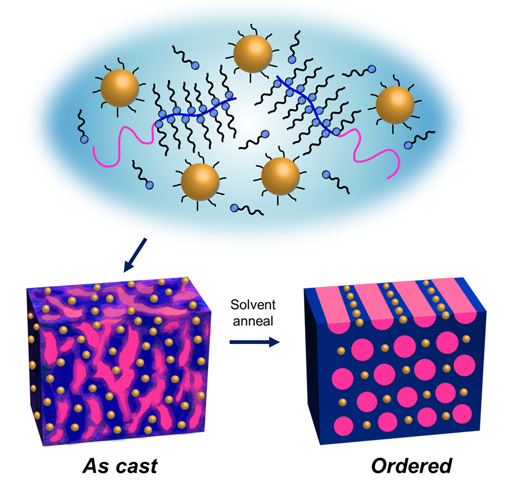 Upon solvent annealing, supramolecules made from gold nanoparticles and block copolymers will self-assemble into highly ordered thin films in one minute. Image credit: Berkeley Lab