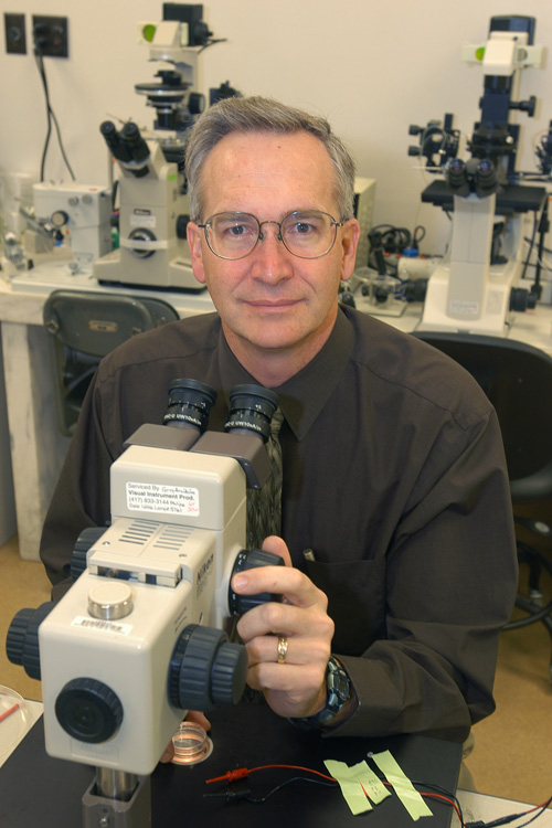 Randall Prather is an MU Curators Professor of reproductive physiology in the College of Agriculture, Food and Natural Resources. Image credit: University of Missouri