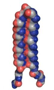 "The UW's designed ""alpha sheet"" protein structure. Image credit: U of Washington"