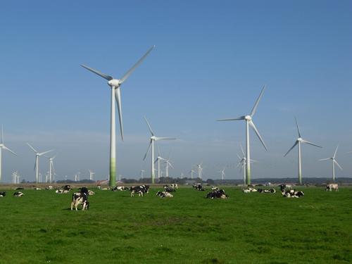 Die Windenergie ist eine tragende Säule der Energiewende. Bild Quelle: Lütkehus / UBA