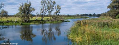 Zentrale Forderung zur Umweltministerkonferenz: Keine Ausnahmen für das Bebauungsverbot in Überschwemmungsgebieten. Image credit: NABU.de