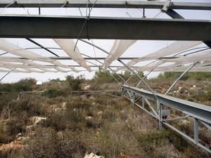 In einem langfristigen Freilandexperiment in Israel untersuchten Forscher die Auswirkungen unterschiedlicher Niederschlagsmengen auf verschiedene Ökosysteme. Foto credit: Katja Tielbörger/Universität Tübingen