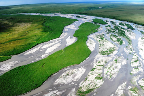 The Sagavanirktok River on the North Slope of Arctic Alaska. Image credit: George W. Kling