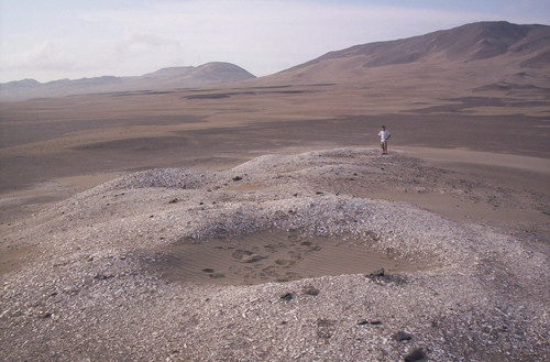 A large shell midden from the Inca period in Peru's Ica valley. The climate here is so dry that even wooden structures are preserved. Image credit: M. Carre / Univ. of Montpellier