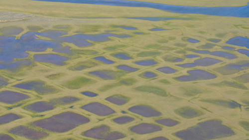 This photo taken during the CARVE experiment shows polygonal lakes created by melting permafrost on Alaska's North Slope. Image credit: NASA/JPL-Caltech