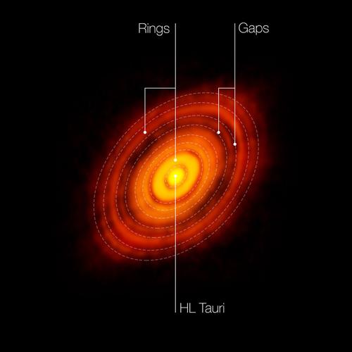 Dies ist das schärfste Bild, das jemals mit ALMA aufgenommen wurde - schärfer als mit dem NASA/ESA Hubble Space Telescope im sichtbaren Spektralbereich. Es zeigt die protoplanetare Scheibe, die den jungen Stern HL Tauri umgibt. Diese neuen Beobachtungen mit ALMA enthüllen Substrukturen innerhalb der Scheibe, die noch nie zuvor gesehen wurden, und zeigen selbst die möglichen Positionen von Planeten die sich in den dunklen Stellen des Systems bilden. In diesem Bild sind die Merkmale gekennzeichnet, die im HL Tauri-System zu sehen sind. Image credit: ALMA (ESO/NAOJ/NRAO)