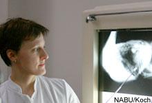 Röntgenaufnahme von Seeadler mit Bleimunition. Image credit: NABU.de