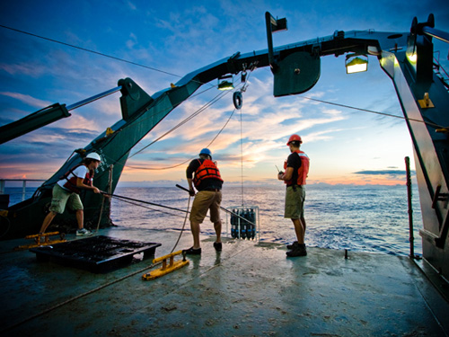 The scientists used a CTD (conductivity, temperature, depth) rosette to collect water samples during a research cruise in October 2011 along a 2,500-mile stretch in the Pacific Ocean, from Hawaii to Samoa. The transect cut across regions with widely different concentrations of nutrients, from areas rich in iron to the north to areas near the equator that are rich in phosphorus and nitrogen but devoid of iron. Photo by Brian Dimento, University of Connecticut