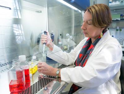 Beatrix Grubeck-Loebenstein vom Forschungsinstitut für Biomedizinische Alternsforschung. Image credit: Universität Innsbruck
