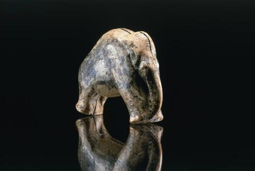 Das Mammut vom Vogelherd (gefunden 2006): Nach neuen Erkenntnissen dezimierten Jäger vor 30.000 Jahren die Population der Pflanzenfresser. Foto credit: J. Lipták, copyright Universität Tübingen