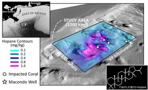 Hydrocarbon contamination from Deepwater Horizonoverlaid on sea floor bathymetry, highlighting the 1250-square-mile area idenfied in this study.  Also shown are locations for the Macondo well and damaged deep sea corals. For reference, the depth of the sea floor at the Macondo Well is 1.5 kilometers. Figure by G. Burch Fisher, UCSB (Click image to enlarge)