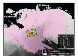 Map of the Northern Gulf of Mexico identifying the locations and extent of contamination for sampling sites used in this study.  Sampling sites are identified as small circles with hotter colors indicating higher levels of contamination.  For reference, the cumulative extent of oil at the sea surface is shown in pink, highlighting the differences in transport of surface slicks and oil suspended in the deep ocean waters. Figure by G. Burch Fisher, UCSB (Click image to enlarge)