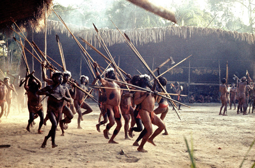 """Men from one Yanomamö village in the Amazon """"dance"""" in a neighboring village to show off their military prowess, weaponry and group cohesion after they were invited to a feast to form a coalition between the two communities. This photo dates from the late 1960s. A new study from the University of Utah and University of Missouri shows how the Yanomamö, whom once gained status by killing, formed """"bands of brothers-in-law"""" alliances between villages rather than fighting in more closely related """"bands of brothers"""" from a single village. Photo Credit: Courtesy of Napoleon Chagnon"""