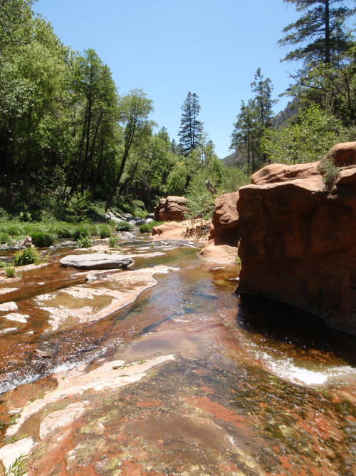 Oak Creek, part of the Verde River Basin of Arizona, dries up during parts of the year. With a warming climate, the frequency and duration of streams drying up will increase causing hardships for desert fish.  Photo credit:  K Fritschie
