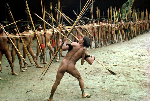 Taken in the late 1970s, this photo shows Yanomamö warriors from two villages preparing to leave on a raid against a third village. A new study showed that the Yanomamö formed such alliances rather than going on raids only with close kin from the same community, which is the way chimpanzees fight. Photo Credit: Courtesy of Napoleon Chagnon
