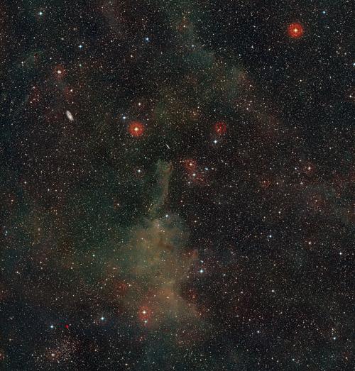 Diese Weitwinkelaufnahme zeigt die sternreiche Himmelsregion des Sternbilds Puppis (das Achterdeck). In der Bildmitte befindet sich die seltsame kometenartige Globule CG4, es sind  aber noch weitere interessante Objekte sichtbar, darunter einige viel weiter entfernte Spiralgalaxien. Diese Farbansicht wurde aus Einzelbildern aus dem Digitized Sky Survey 2 erstellt. Image credit: ESO and Digitized Sky Survey 2