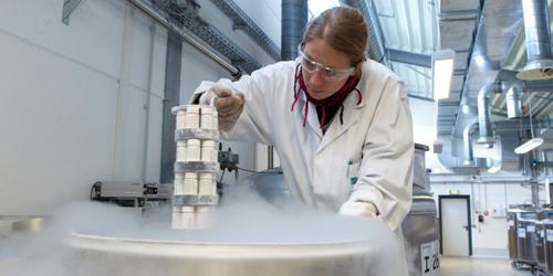 Umweltprobenbank: Eiskalt für Umwelt- und GesundheitsschutzImage Quelle: Umweltbundesamt