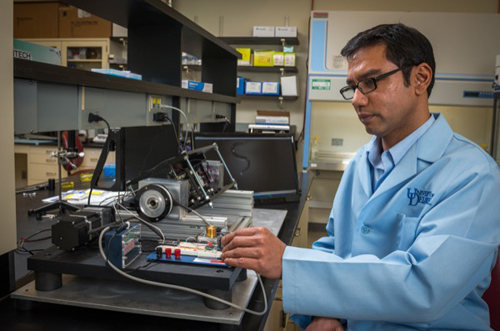 Chandran Sabanayagam studies the worm C. elegans at the Delaware Biotechnology Institute. Photo by Kathy F. Atkinson