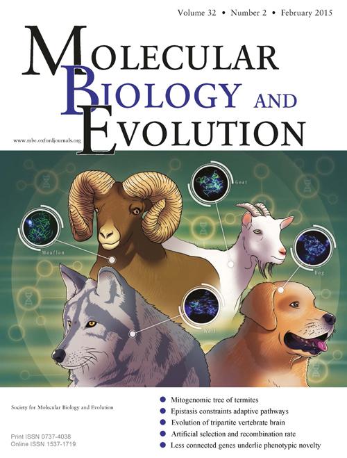 """Die Studie ziert das aktuelle Cover des Fachjournals """"Molecular Biology and Evolution"""". Image credit: © Society of Molecular Biology and Evolution"""