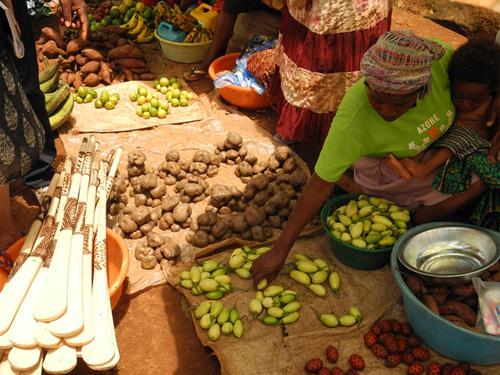 Hier nahm die Studie ihren Anfang: Ein Marktstand in Nordangola. Image credit: © Senckenberg