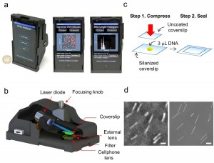 Smartphone microscope. (a) Photographs of the mobile-phone based fluorescence microscopy platform for single DNA molecule imaging and sizing.  A Windows-based smart application running on the same mobile-phone was also created to transfer images from the phone to a custom-designed remote server and display the received DNA analysis results back on the screen of the phone. (b) A 3-D illustration of the same opto-mechanical attachment. (c) Schematic illustration of a simple DNA stretching method used in this work. (d) Representative fluorescence microscope images of stretched DNA molecules that are acquired by using the mobile-phone microscope (left) and a bench-top fluorescence microscope with a 100× oil-immersion objective lens, NA=1.3 (right). Scale bar, 10 microns. Image credit: Ozcan Lab at UCLA (Click image to enlarge)