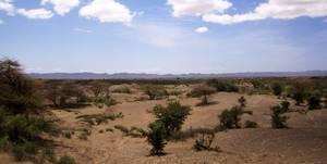 Auch in der heutigen Koobi Fora Region in Kenia fanden sich unterschiedlich große Vertreter der Gattung Homo. Foto credit: Manuel Will