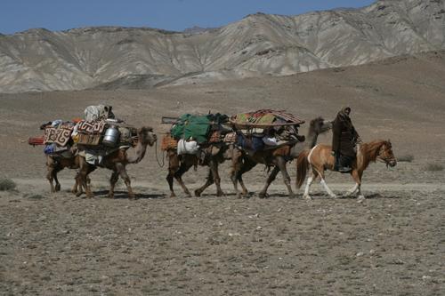 Zunehmend auch in Zentralasien ein seltenes Bild: Wanderhirten verlegen ihren Hausstand mehrfach im Jahr und nutzen so die jeweils besten Weidegründe. Image credit: © Senckenberg