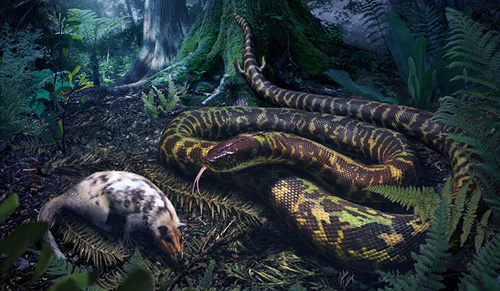 Artist's rendering of an ancestral snake. (Image by Julius Csotonyi)