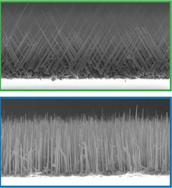 Nanowires grown using catalyst rich in gold (top) and nickel (bottom). Image credit: Berkeley Lab