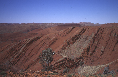 The oldest samples are sedimentary rocks that formed 3.2 billion years ago in northwestern Australia. They contain chemical evidence for nitrogen fixation by microbes. Image credit: R. Buick / UW