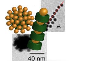 Die schematischen Modelle und elektronenmikroskopischen Aufnahmen zeigen definierte Architekturen aus Proteinen (im Modell grün) und Goldnanopartikeln. Bild Quelle: Stefan Schiller