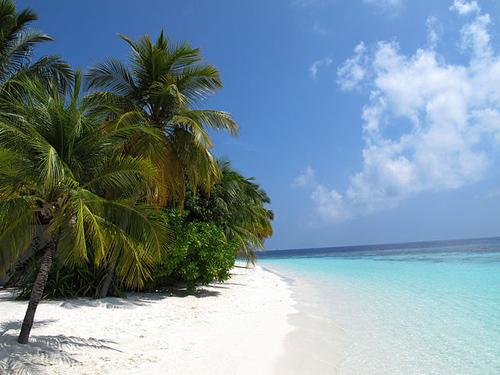 Die Malediven als Teil der Allianz der Kleinen Inselstaaten (AOSIS) unterstützen das 1,5 Grad-Ziel. Image credit: Élite Diving Agency (Image source: Wikipedia, CC BY-SA 3.0)