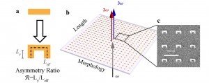 Metamaterial arrays whose geometry varied gradually from a symmetric bar to an asymmetric U-shape were used to compare the predictive abilities of Miller's rule and a non-linear light scattering theory. Image credit: Berkeley Lab