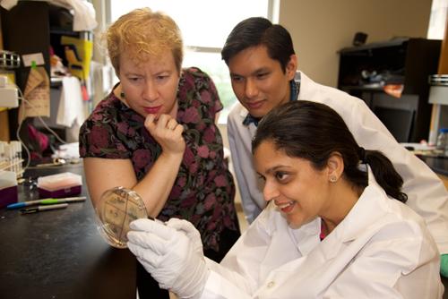 Vernita Gordon (left) is shown with co-authors Nalin Ratnayeke and Karishma Kaushik (bottom right).  Image credit: Marc Airhart/U. of Texas at Austin