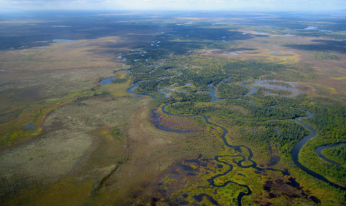 One of the many tributaries to the Upper Nushagak River. Image credit: Sean Brennan, UW